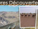 Desert aventures découvertes est une petite structure qui vous propose entre autre des trekkings et circuits 4x4 au Maroc