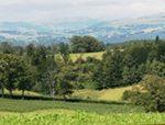 Découvrez deux gîtes ruraux du Cantal