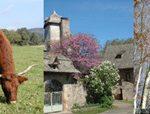 Louer un gîte du Cantal à 20 kilomètres de Conques