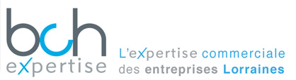 expertise commerciale