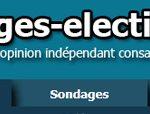 Sondages en ligne: Votez pour ou contre Sarkozy, DSK, Borloo, Le Pen, ...