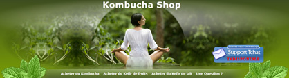 e-commerce Kombucha, Kéfir