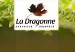 La Dragonne Arboriste est une entreprise d'élagage/abattage des arbres sur le Loir et cher