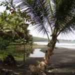 Visitez la Guadeloupe à travers notre article !
